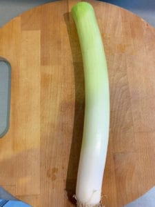 A picture of a Leek with the leaves trimmed off