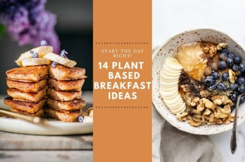 Plant based breakfast ideas cover photo