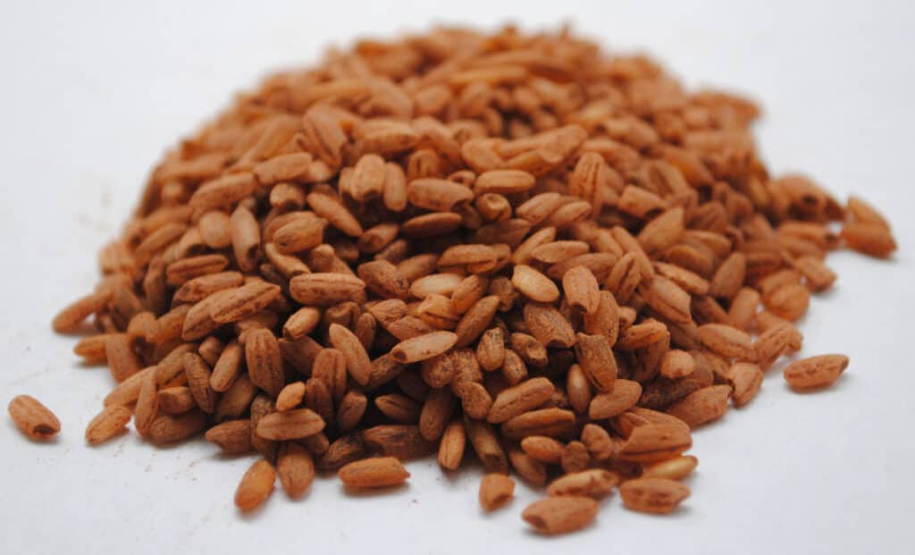 Red rice grains on a white background