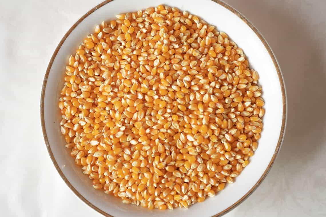 Corn kernels in a white bowl